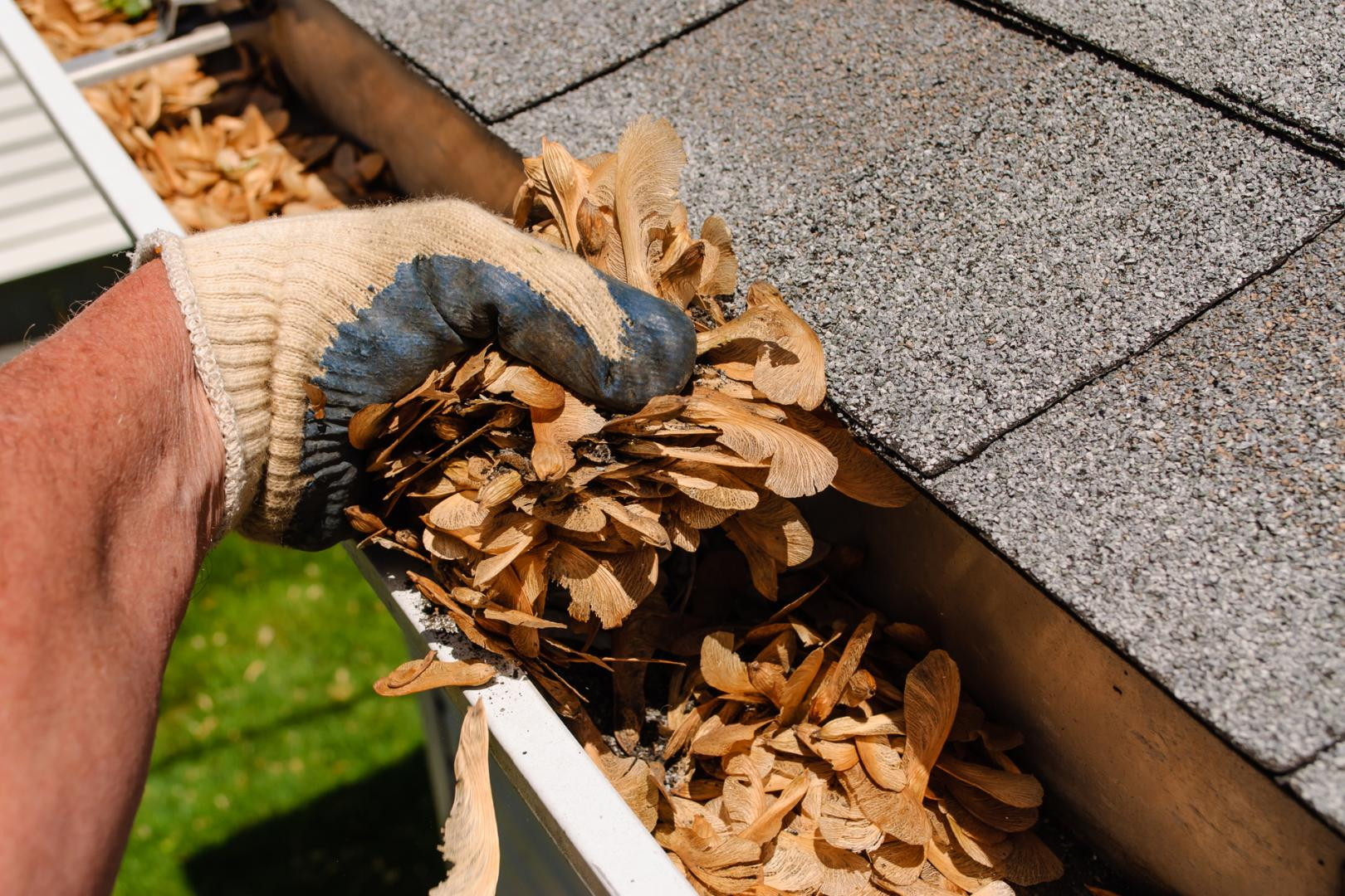 Gutters Cleaning and Maintenance Tips
